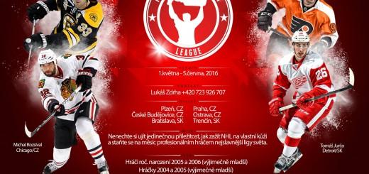 PDL 2016 - plakat